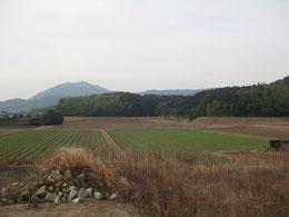 碑の正面に広がる田園風景