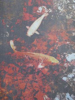 佐藤貢さんの一席作品「紅葉に魅せられて」