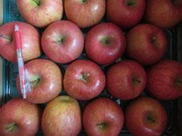 年末、姉から届いたリンゴ