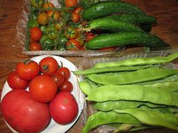 老母が作った野菜