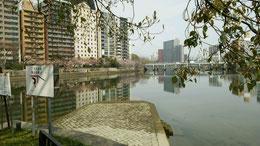 広島駅前 猿猴川と京橋川の分かれ