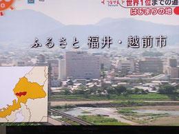 「見延」の父祖の地・福井