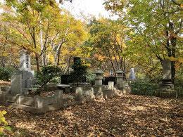 「井川家」の奥に「中山家」の墓所が。