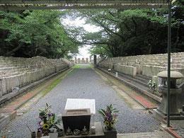 現在の陸軍墓地