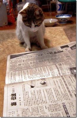 あら、ずいぶん古い新聞を読んでいる!