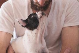Thérapie assistée par chien