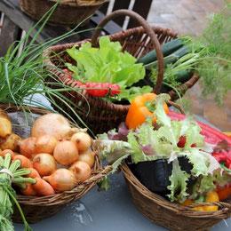 Frisches Gemüse, Zwiebeln, Salate in Körben zusammengestellt
