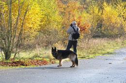 Mit Diensthund