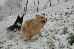 ...oder Schnee...