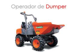 Operador de Dumper