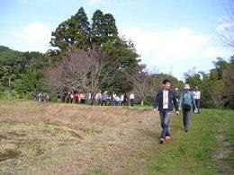 天徳寺周辺を散策中