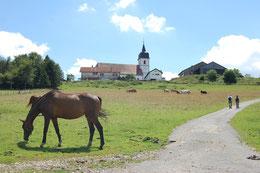 Blick zur Kirche von Montfaucon