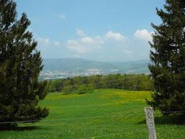 Blick von der Weis Le Bambois auf Delsberg