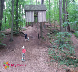 Luftschloss auf dem Waldkunstpfad