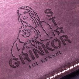 razrabotka disain logotipov Ukraina; elegantnie kreativnie logotipy; logotip pitomnik tibetskih mastifov; pitomnik tibetan keeper logotip; zakazat disain logotipov Ukraina; pitomnik tibetskih mastifov tibetan keeper ukraina; disain krasivyh logotipov port