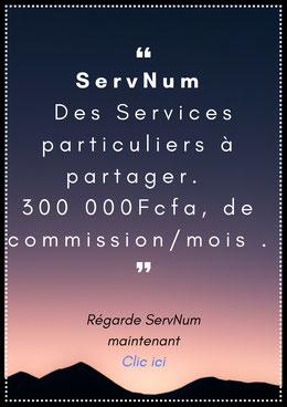 Nom: Projet ServNum, Code produit S-00070