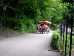 kleiner Gemeindeausflug im Harz