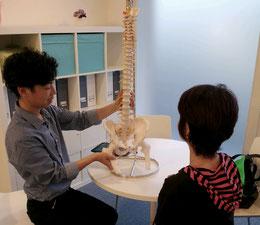 奈良県大和高田市の頚椎ヘルニア整体説明