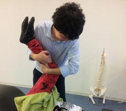 狭窄症の整体方法