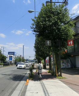 東八通りに入り東へ。この道も自転車専用レーンがあるので通りやすいです。吉祥寺通りは道が狭いところもあるので要注意