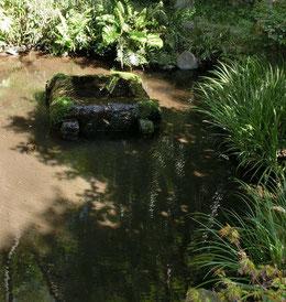 その庭に水が湧きだす池がありました。ここが「わが泉」だったのでしょう