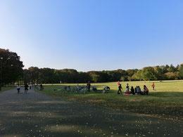 ●園内は実に広大で気持ちいいです。面積は、日比谷公園の約5倍だそうです。凧をあげているいる人もいます