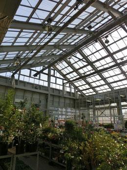 中に入るとそこは大きな温室のようなところ、さまざまな花木がところ狭しと並んでいます