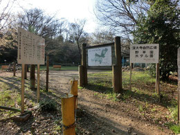 野草園のある深大寺自然広場の入口です。