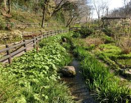 園内には湧き水が流れ、野趣あふれる空間です