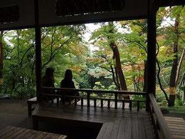 ●外に出て庭園を散策。次郎弁天池を見下ろす場所に紅葉亭がありました