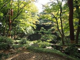 ●殿ヶ谷戸庭園の紅葉亭から見下ろす次郎弁天池。紅葉のころは絶景となります。