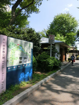 有三記念館を出て風の散歩道を吉祥寺通りにもどります。吉祥寺駅のほうに向かい井の頭自然文化園(動物園)をすぎた右手に井の頭公園の案内所が見えて来ます
