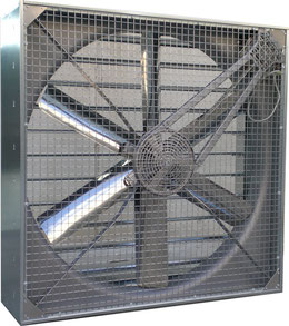 Stall Lüfter, Stalllüfter, Stallüfter, Stall Ventilator, Stallventilator, Großraumventilator, Großraum Ventilator, Stall-Lüfter