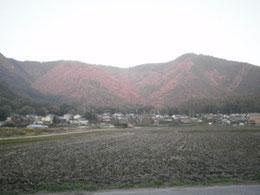 2010年11月20日 :秋も深まったささ営農付近の風景です。