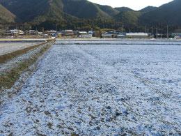 2012年2月2日冬景色