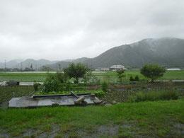 2010年6月26日 : 梅雨の真っただ中の風景