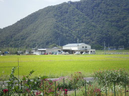 2010年9月18日 :暑い夏が終わりひと段落ついたささ営農付近の風景です