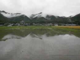 2011年6月11日 梅雨時期