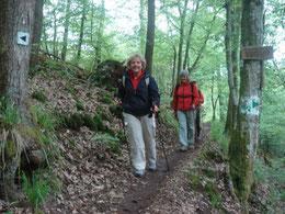 Nordic Walking achter de duinen