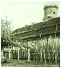 Das Turmgebäude von der Rückseite mit den ehem. Beamtengärten. Photo Anfang 1960er Jahre.