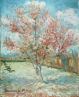 手紙№592ピンクの桃の木