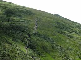 オツボ峰ルート登山道