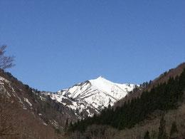 快晴の空に圧倒的な存在感でたたずむ大朝日岳