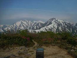 ▲展望台付近はタムシバやツツジが咲いていて春の様子。右奥に小朝日岳、中央左に大朝日岳が望める絶好のビューポイント!