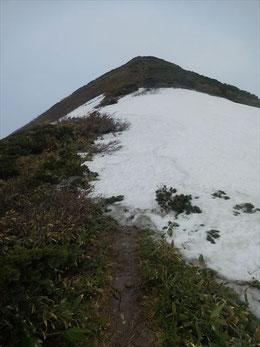 ▲山頂直下の残雪。下りでは靴スキーを楽しみました。