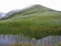 ▲中岳と西朝日岳の間にある草地と池塘