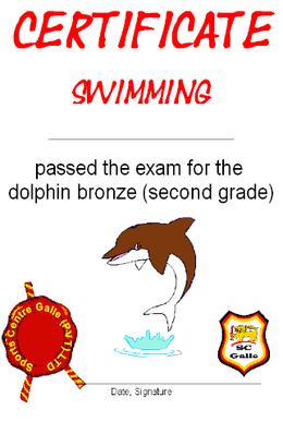 Certificate bronze