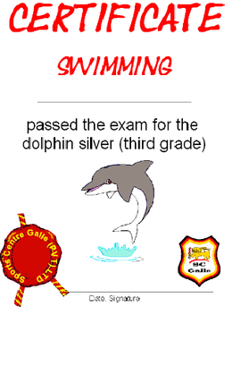 Certificate silver