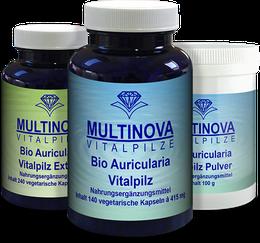 Auricularia Vitalpilz
