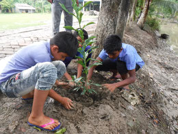 学校のすぐそばを流れる川は、大雨のたびに氾濫を起こす。その被害を少しでも軽減できるように、川岸に植林を実施